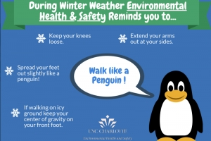 Walk Like a Penguin